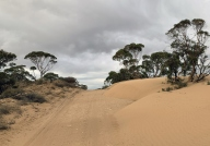 Sand Over Track north of Murrayville